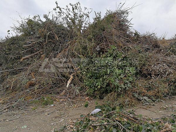 园林垃圾破碎机项目案例,园林垃圾处理项目方案